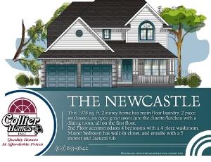 the-newcastle